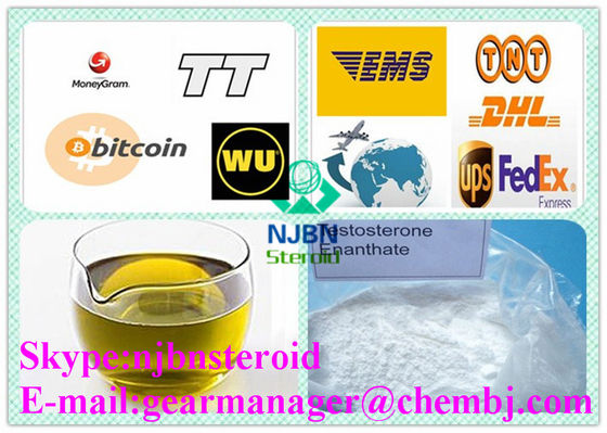 China Injecteerbaar Anabool de Steroïdentestosteron Enanthate 250mg/ml van CAS 315-37-7 leverancier